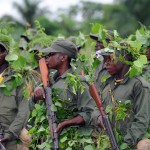 20 miljarder kronor senare… Freden måste vinnas lokalt i Kongo