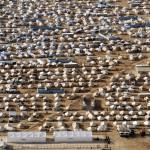 Stoppa blödningen! Det räcker inte med plåster till världens flyktingar