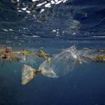 Kampen mot plasten