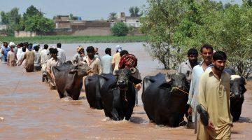Skärpt fokus inom FN på klimat-relaterade säkerhetsrisker