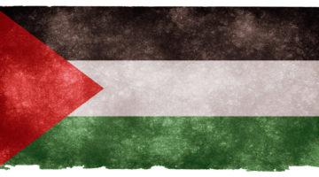 Palestina – vem bryr sig?