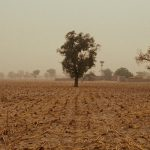 Risk, But Also Opportunity in Climate Fragility and Terror Link