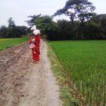 """Kvinnorna i Bangladesh hotas av flera """"virus"""""""
